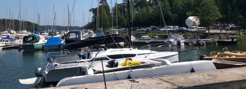 Dragonfly 28 Performance 2019 for sale